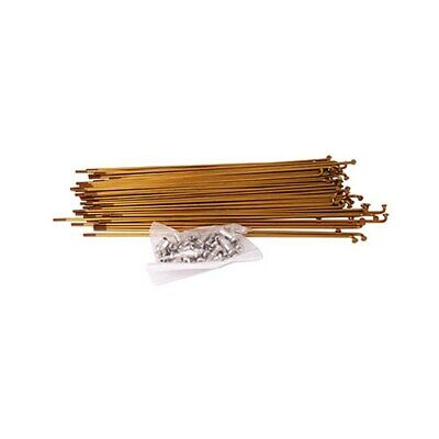 Odyssey Stainless Steel Spokes Gold • 26.99£